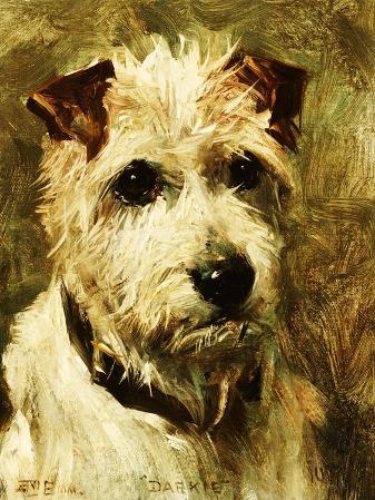 Portrait of a Terrier: Darkie, 1903