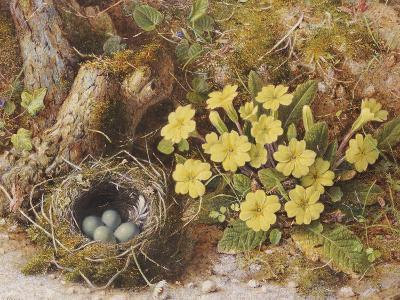 Still Life with a Bird's Nest and Primroses on a Mossy Bank