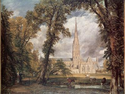 Salisbury Cathedral, from the Bishop's Grounds