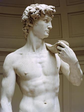 David, Detail