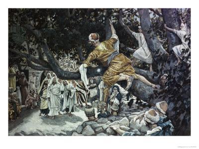 Zacchaeus in the Sycamore Tree