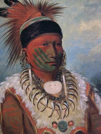 White Cloud, Chief of the Iowas