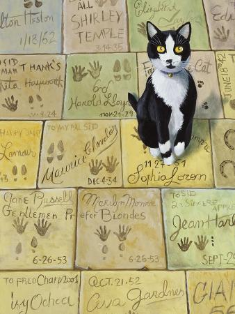 Cat in Hollywood (Chat a Hollywood)