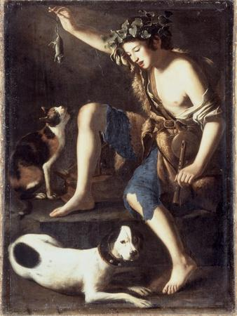 Young Shepherd Playing with a Cat