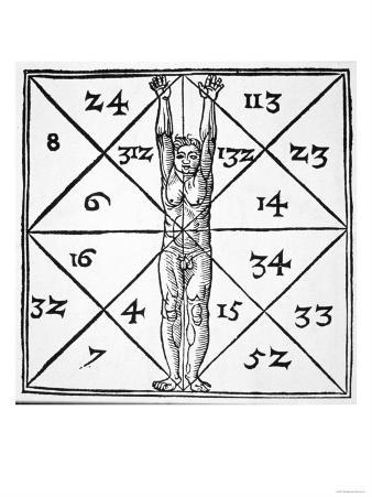 "The Proportions of Man and Their Occult Numbers from ""De Occulta Philosophia"""