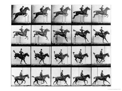 """Man and Horse Jumping, from """"Animals in Motion"""", London, Published 1907"""