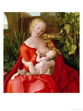 """Virgin and Child """"Madonna with the Iris,"""" 1508 (Detail)"""