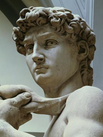 David, Detail of the Head, 1504