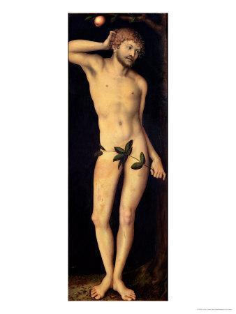Adam, 1528