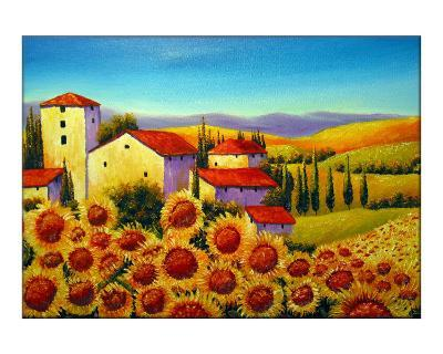 Tuscan Houses and Sunflowers Field Near Marina di Pisa