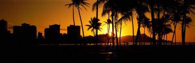 Oahu, Hawaii, USA