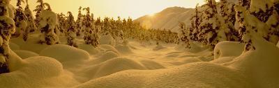 Sunset, Turnagain Pass, Alaska, USA