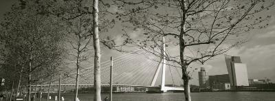 Bridge Over a River, Erasmus Bridge, Rotterdam, Netherlands