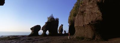 Person with a Dog, Bay of Fundy, Hopewell Rocks, New Brunswick, Canada