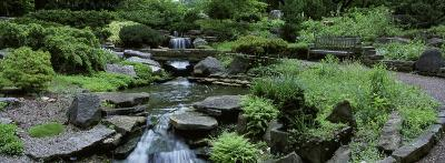 River Flowing Through a Forest, Inniswood Metro Gardens, Columbus, Ohio, USA
