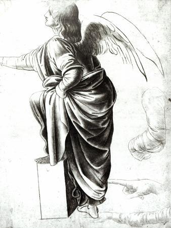 Study of an Angel