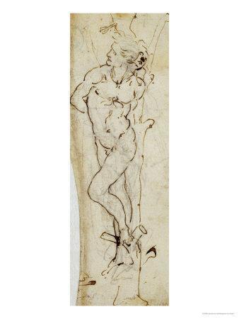 Study of St. Sebastian, 1480-81