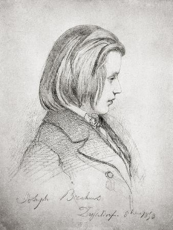 Portrait of Johanes Brahms Aged Twenty, 1853