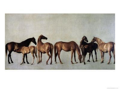 Mares and Foals Without a Background, circa 1762
