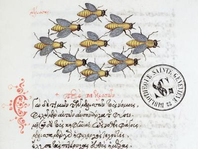 From a Bestiary by Manuel Philes, 1566