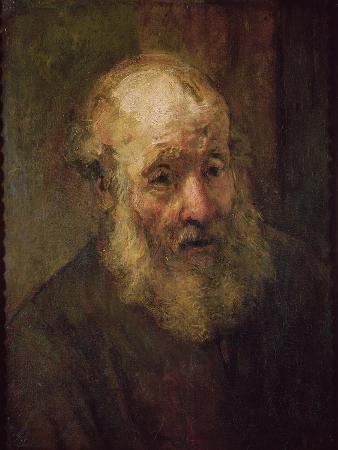 Head of an Old Man, circa 1650