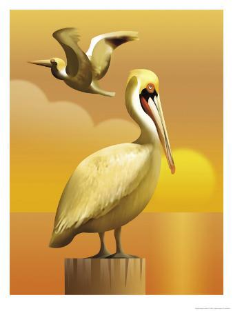 A View of Two Pelicans, One Standing on a Post and One Flying