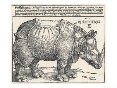 The Indian Rhinoceros is the Largest of the Asian Spiecies