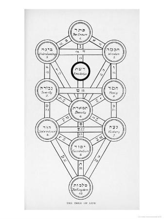 The Tree of Life of the Jewish Caballa