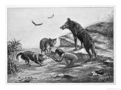 Feral Child Quarrelling with Wolf Cubs Over Food 5 of 5