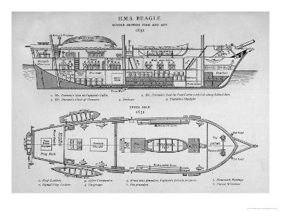 Hms Beagle Charles Darwin's Research Ship
