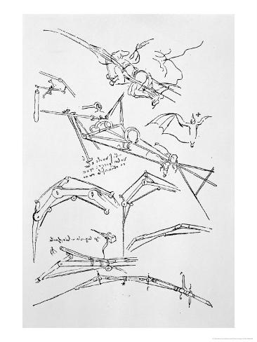 Sketches Of Flying Machines Giclee Print By Leonardo Da Vinci At