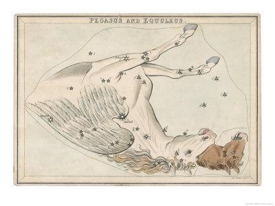 The Pegasus and Equuleus Constellation
