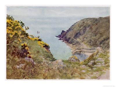 Cornish Scenery: Lamorna Cove