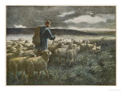 """""""Fleeing the Storm"""", a Shepherd Returns Home with His Flock Before They All Get Soaked"""