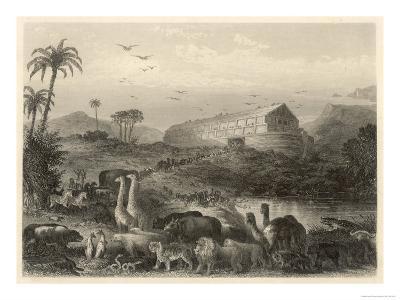 The Animals Enter Noah's Ark