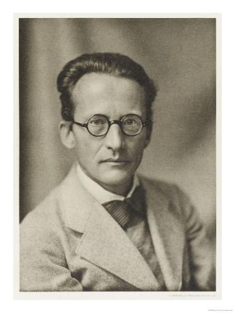 Erwin Schrodinger Austrian Physicist