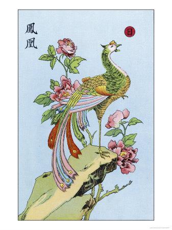 Fong Hoang, The Chinese Phoenix