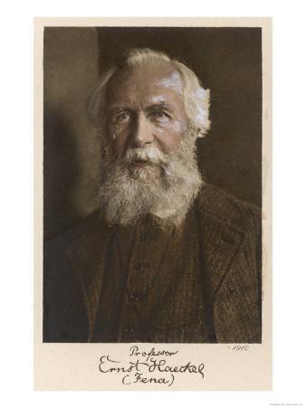 Ernst Haeckel German Scientist at Age 75