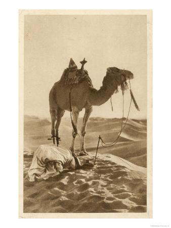 Moslem Prays in the Desert His Face Towards Mecca While His Camel Waits Patiently