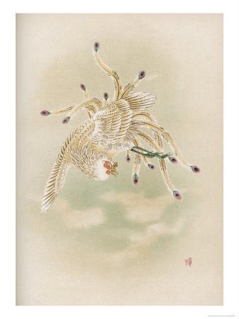 Ho-Wo Bird, Japanese Phoenix