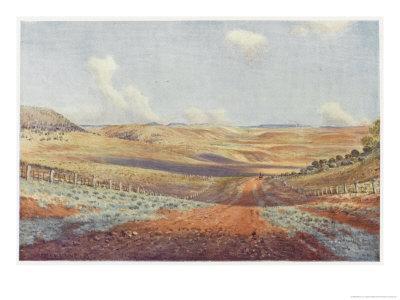 The Monaro Plains