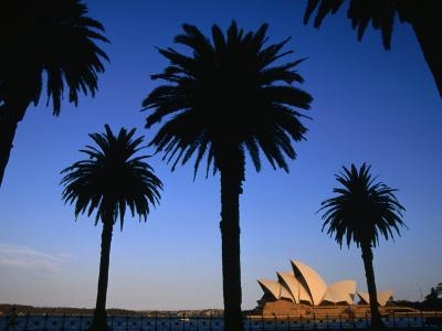 Sydney Opera House Viewed from Dawes Point Park, Sydney, New South Wales, Australia