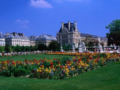 Garden Outside the Louvre Paris, France