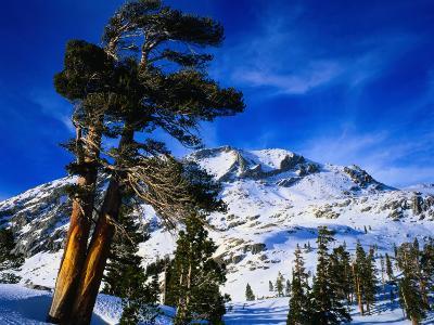 Snow Covered Mountain in Sierra Nevada, California, USA