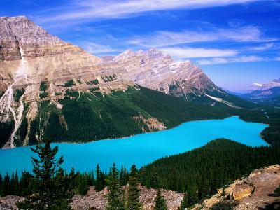 Overhead of Peyto Lake and Mountains, Summer, Banff National Park, Canada