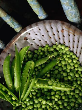 Fresh Green Peas in Bowl, Melbourne, Victoria, Australia