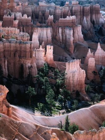"Overhead of ""Hoodoo"" Limestone, Sandstone and Mudstone Formations, Bryce Canyon National Park"