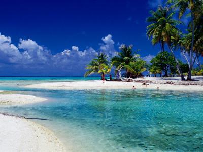People Swimming in Lagoon, French Polynesia
