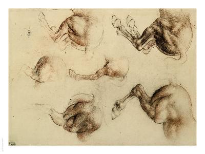 Study of Running Horses, Drawing, Royal Library, Windsor