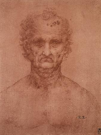 Head of an Old Man, Drawing, Royal Library, Windsor